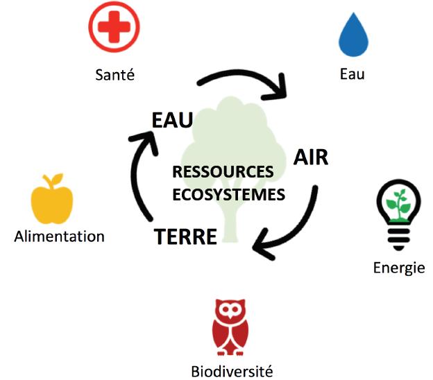Schéma conceptla Cité de l'Environnement